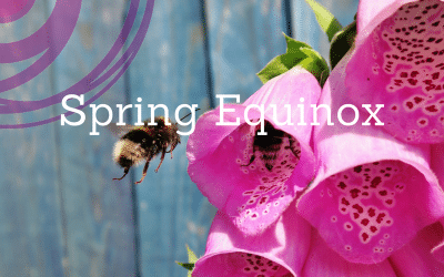 Spring Equinox: A Call for Rebirth & Renewal